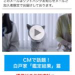 オムニバス、ソフトバンクモバイルが提供する 「ソフトバンクお知らせメール(iPhone版)」の新広告メニューに 動画広告の配信技術を提供