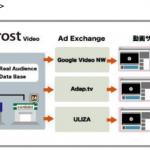 Platform ID、日本初のリアルオーディエンスターゲティングを実現する インストリーム動画広告専用 DSP を提供開始