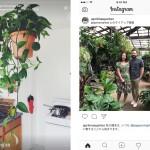 Instagram、サブヘッダーにタイアップ投稿であることを明記へ