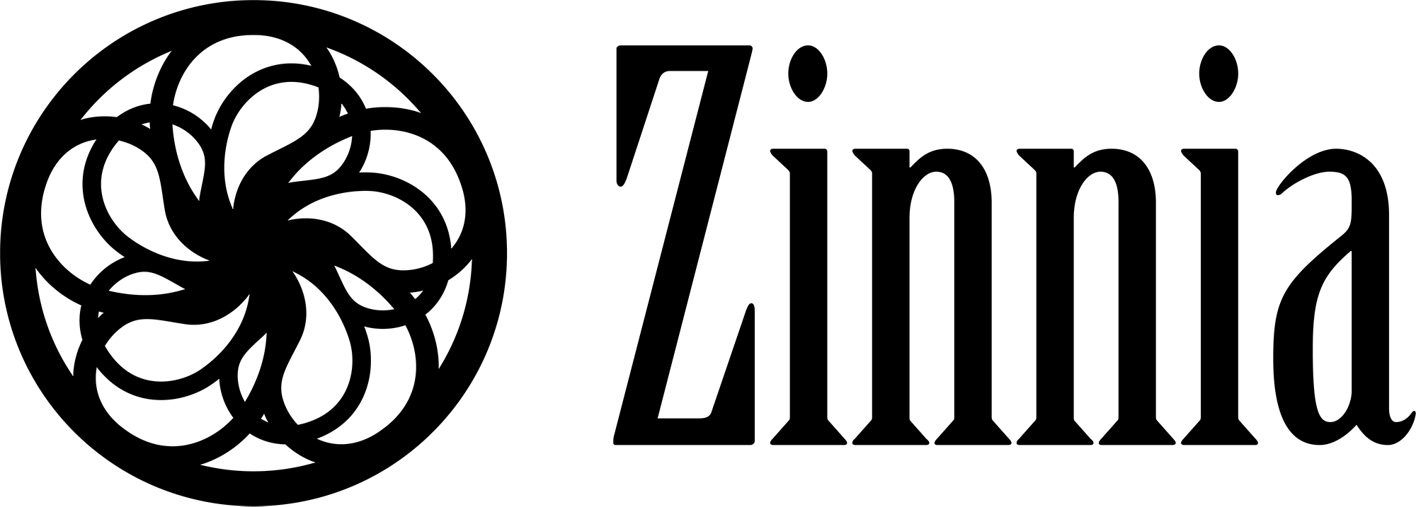 zinnna