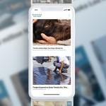 Taboola、Business Insiderと戦略的提携を拡大