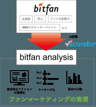 bitfan analysis