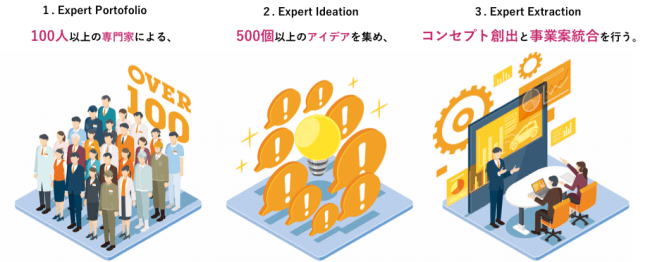 Expert Idea 500