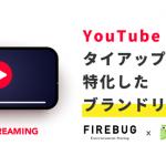テスティー、コンテンツプロデュースに特化したFIREBUGと共同でYouTubeタイアップに特化したブランドリフト調査提供開始